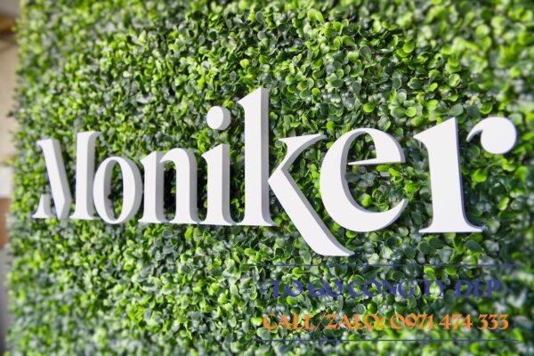 Lô gô mica Amslink trên nền mica trắng với trang trí cỏ giả xung quanh
